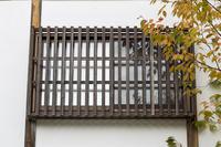 Feel the autumn - jinsnap_2(weblog on a snap shot)