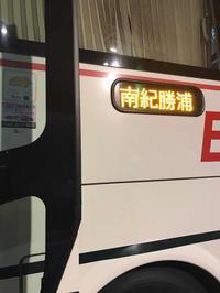 熊野本宮大社 - 猫と、旅する猫用カメラ