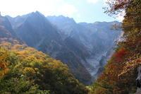 谷川岳の紅葉~幽ノ沢~ (撮影日:2018/10/22) - toshiさんのお気楽ブログ
