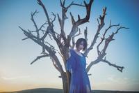 藍井エイル「アイリス」:音は色を呑み込み、色を失いかけた世界で歌声が咲く - inthecube