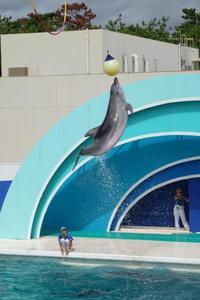 ジャンプ! - aya's photo