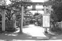 新津堀出神社 - the best shot Ⅳ
