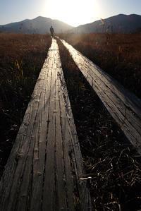 木道ぽくぽく - ぼんぼんトントン 写真