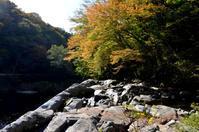 ちょっと、うっすら、紅葉始まり・・「夏井川上流」 - Nature World & Flyfishing