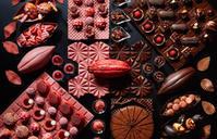 【六本木】第4のチョコ、ルビーチョコレート♡ - casa del sole