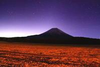 30年10月の富士(4)平原の富士 - 富士への散歩道 ~撮影記~
