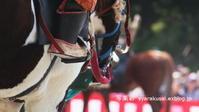 時代祭の馬 - 写楽彩