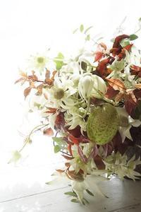 フランネルフラワーのブーケ、主役を変えると… - お花に囲まれて