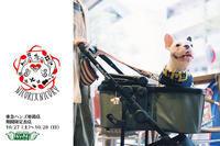 10/27(土)〜10/28(日)は、東急ハンズ姫路店に出店します!! - 職人的雑貨研究所
