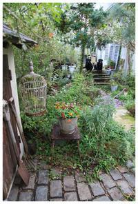 natuは9周年めに入りました。 - natu     * 素敵なナチュラルガーデンから~*     福岡で庭造り、外構工事(エクステリア)をしてます