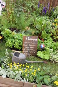 国バラで見たポタジェ&サツマイモ収穫♪ - ペコリの庭 *