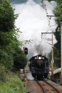 戻り梅雨の白煙- 秩父・2018年初夏 - - ねこの撮った汽車