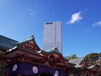 日枝神社 - いや、だから 姉ちゃん じゃなくて ネイチャー・・・