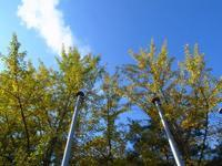 自然の家 - yoshiのGR散歩