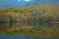Autumn color - Photographie de la couleur