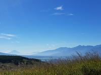 ダーチャ三日目。霧ヶ峰から富士山が見えた! - 牡蠣を煮ていた午後