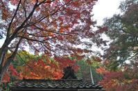 想い出の京都 - バリ島大好き