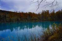青い池と白髭の滝 - お茶にしませんか2