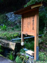ふる里の泉前の紅葉-上勝町ー - ブナの写真日記