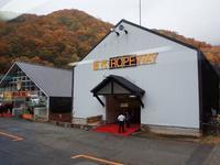 新潟の秋は小雨模様だった(^^;苗場ドラゴンドラから見る紅葉は如何に?・・・日帰りバスツアー一人旅 - 『私のデジタル写真眼』
