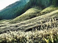 ススキ原山の畝 - 風の香に誘われて 風景のふぉと缶