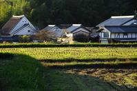 明日香村八釣大和棟夕方 - ぶらり記録 2:奈良・大阪・・・