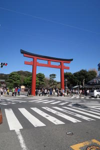 鶴岡八幡宮 - Sorekara・・・