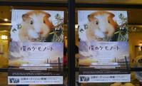 「僕のケモノート」公開オーディションに行ってみた- 公開オーディション編 - - ほよほよすくらっぷ vol.3