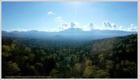 北海道の秋-2銀泉台・黒岳 - 野鳥の素顔 <野鳥と・・・他、日々の出来事>