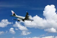 来年までお預け - 南の島の飛行機日記