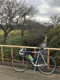 利根川サイクリングロードで香取神宮へ - pottering
