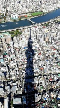 ~ 東京おのぼりさん写真② ~ - カメラをお供に