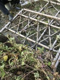 竹垣を壊す夫 - 島暮らしのケセラセラ