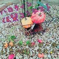 2018【ハロウィン仮装コンテスト】投票会場 - cache-cache~成田市ハンドメイドマーケット&オープンガーデン~