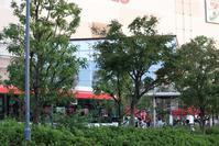 足立区の街散歩347「葛飾区篇」 - 一場の写真 / 足立区リフォーム館・頑張る会社ブログ