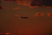 伊丹空港まで後少し。 - 写真と画像 Illustrator&Photoshopで楽しんでます! ネイル画像!