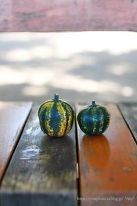 Pumpkin Day - *Any*