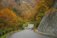 10月29日奥只見湖の紅葉 - てしやから君の撮影日記