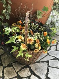 10月ガーデンアンドクラフツ寄せ植え教室① - 小さな庭 2