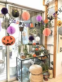 ハロウィンパーリー☆オバケ料理 - ケセラセラ~家とGREEN。