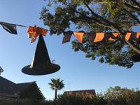 秋晴れの横浜イングリッシュガーデン - piecing・針仕事と庭仕事の日々