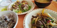 徳島県庁食堂でジビエ料理を堪能 - 藍。の着物であるこう