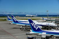 青ばっかり(3) - 南の島の飛行機日記