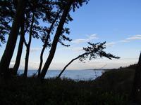 冬の気配と海 - タビノイロドリ