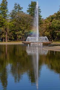 彩の森入間公園 - デジカメ写真集
