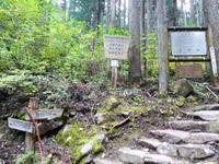 久しぶりに株杉コースから蕪山 (1,068.9M)    登頂 編 - 風の便り