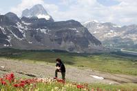 2018年 初夏から秋のハイキングシーズンを振り返る。今年もたくさんの素敵な場面がありました。 - ヤムナスカ Blog