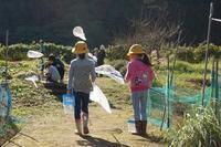 天晴れ(あっぱれ)秋晴れ!自然観察 - 千葉県いすみ環境と文化のさとセンター