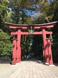 県内随一のパワースポット弥彦神社 - 麹町行政法務事務所