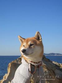 海さんぽ - yamatoのひとりごと